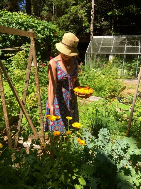 2018 J in Garden